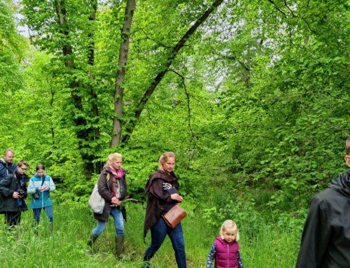 Kräuterwanderung durchs Lindholz